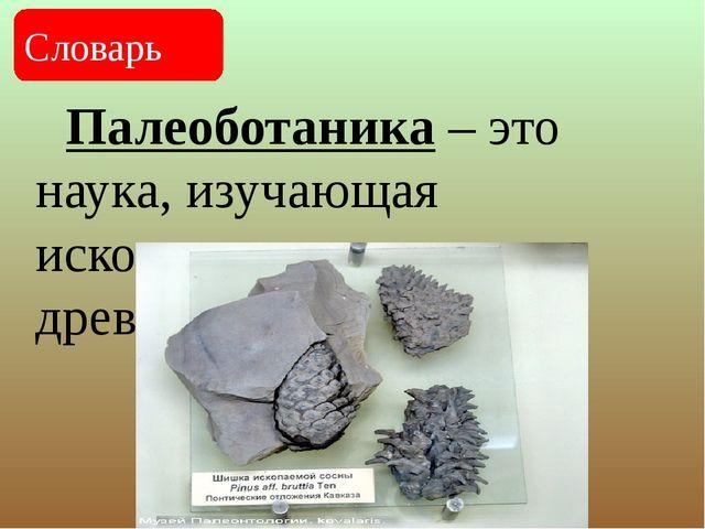 Палеоботаника – это наука, изучающая ископаемые остатки древних растений. Сл...