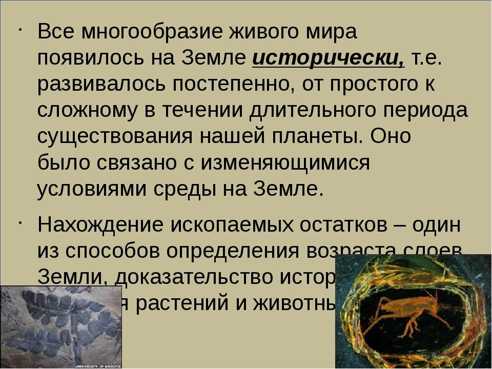 Все многообразие живого мира появилось на Земле исторически, т.е. развивалос...