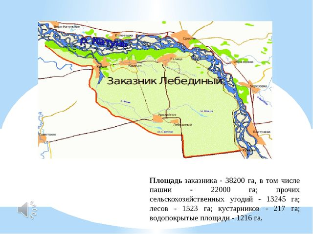 Площадьзаказника - 38200 га, в том числе пашни - 22000 га; прочих сельскохоз...