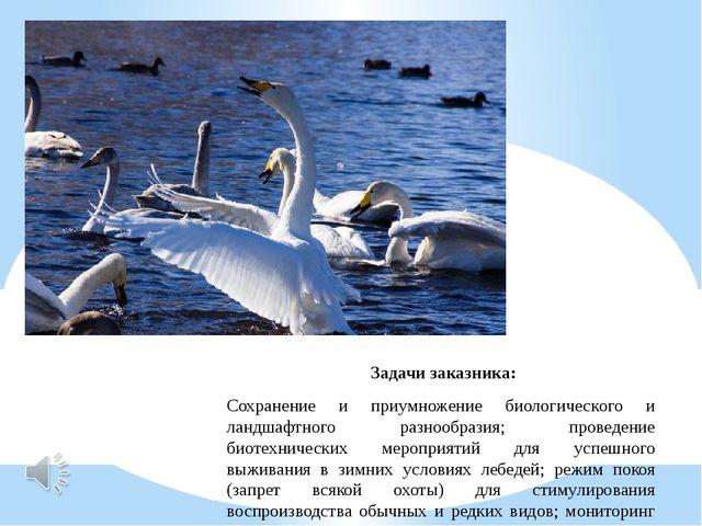 Задачи заказника: Сохранение и приумножение биологического и ландшафтного ра...