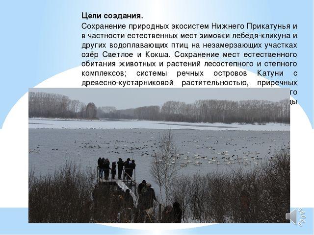Цели создания. Сохранение природных экосистем Нижнего Прикатунья и в частност...
