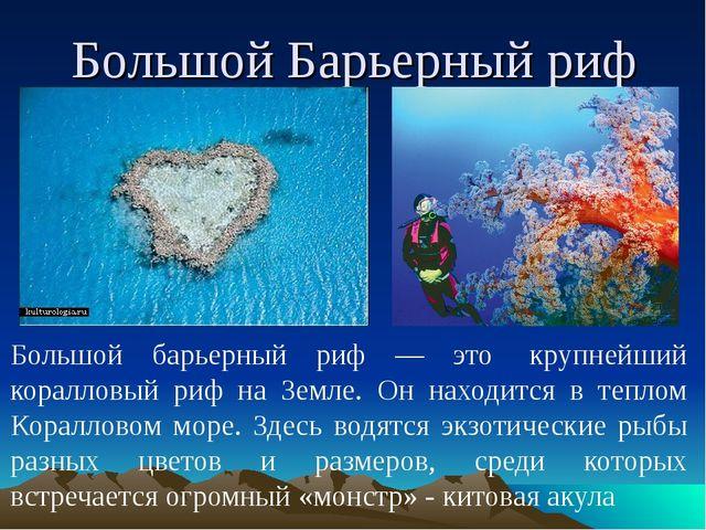 Большой Барьерный риф Большой барьерный риф — это крупнейший коралловый риф...