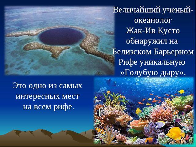 Величайший ученый- океанолог Жак-Ив Кусто обнаружил на Белизском Барьерном Ри...