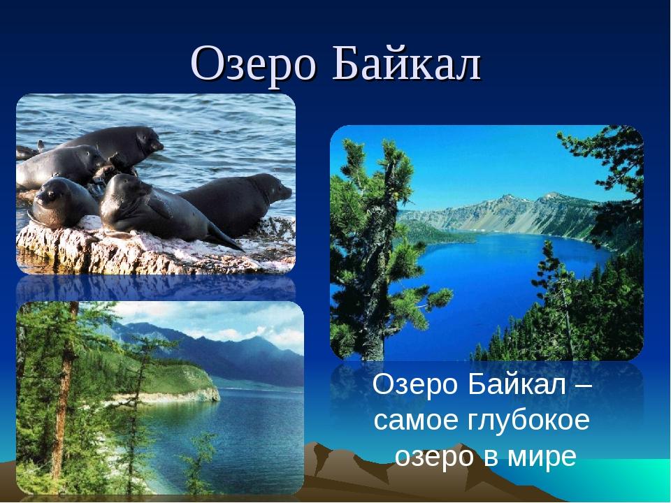 Озеро Байкал Озеро Байкал – самое глубокое озеро в мире