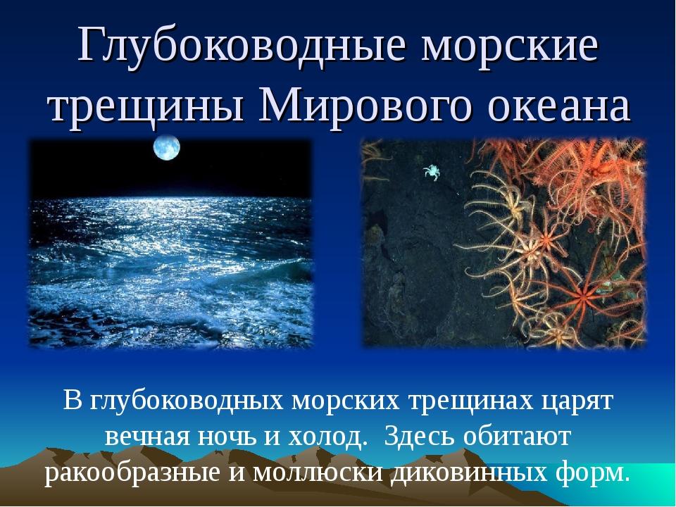 Глубоководные морские трещины Мирового океана В глубоководных морских трещина...