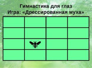 Гимнастика для глаз Игра: «Дрессированная муха»