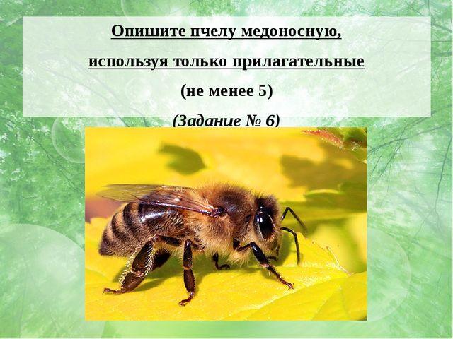 Опишите пчелу медоносную, используя только прилагательные (не менее 5) (Задан...