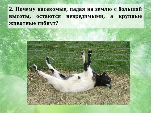 2. Почему насекомые, падая на землю с большой высоты, остаются невредимыми, а...