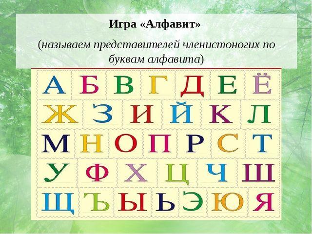 Игра «Алфавит» (называем представителей членистоногих по буквам алфавита)