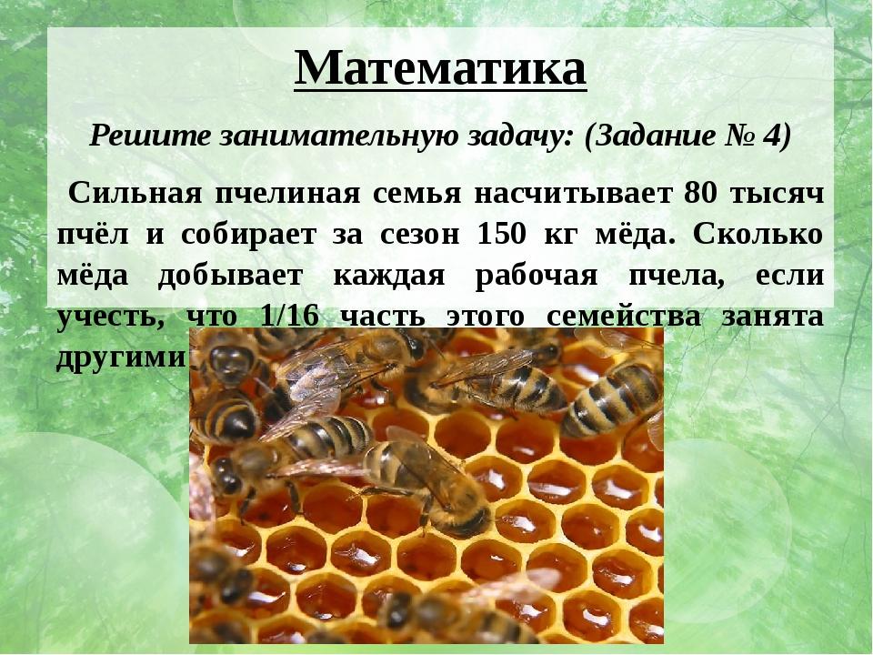 Математика Решите занимательную задачу: (Задание № 4) Сильная пчелиная семья...