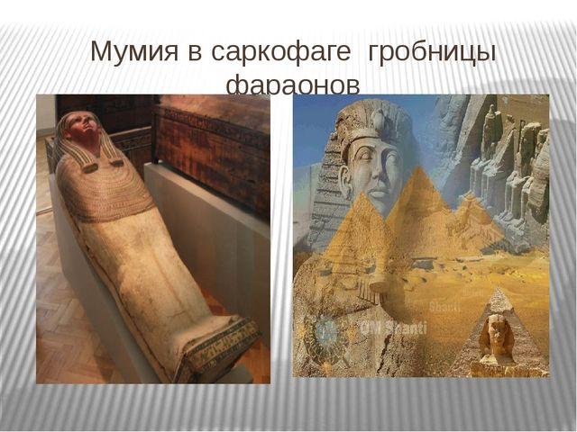 Мумия в саркофаге гробницы фараонов
