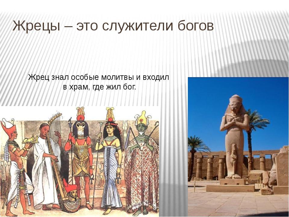 Жрецы – это служители богов Жрец знал особые молитвы и входил в храм, где жил...