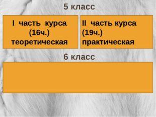 5 класс 6 класс І часть курса (16ч.) теоретическая ІІ часть курса (19ч.) прак