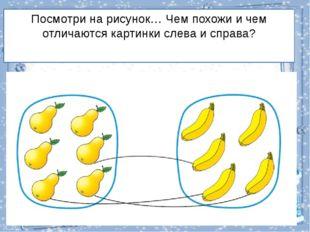 Посмотри на рисунок… Чем похожи и чем отличаются картинки слева и справа?