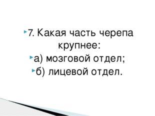 7. Какая часть черепа крупнее: а) мозговой отдел; б) лицевой отдел.