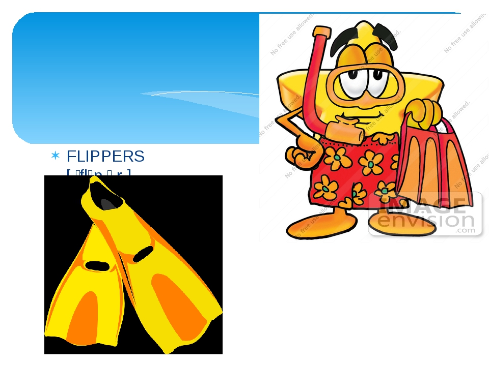 FLIPPERS [ ˈflɪp.ər ]
