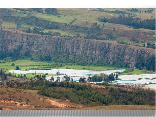 В пределах Западной Кордильеры создан национальный парк «Фаральонес-де-Кали»