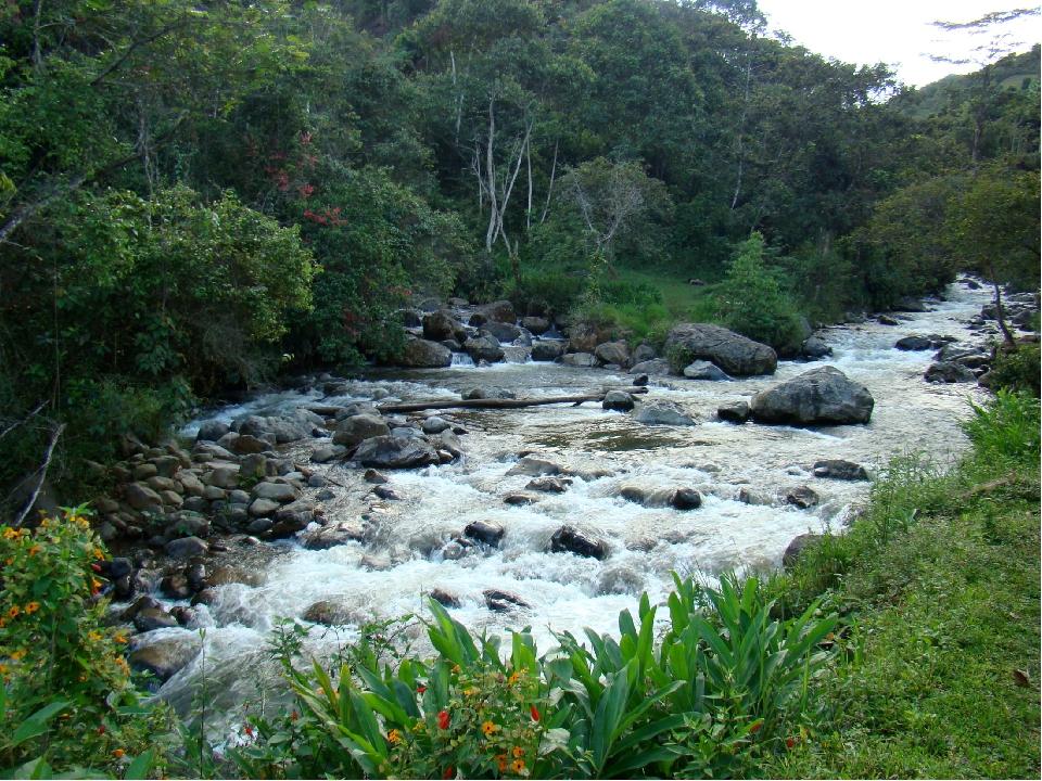В пределах Западной Кордильеры создан национальный парк «Фаральонес-де-Кали»...