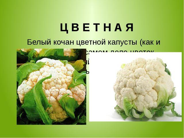 Ц В Е Т Н А Я Белый кочан цветной капусты (как и брокколи) - на самом деле ц...