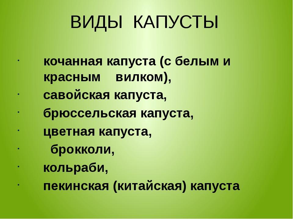 ВИДЫ КАПУСТЫ кочанная капуста (с белым и красным вилком), савойская капуста,...