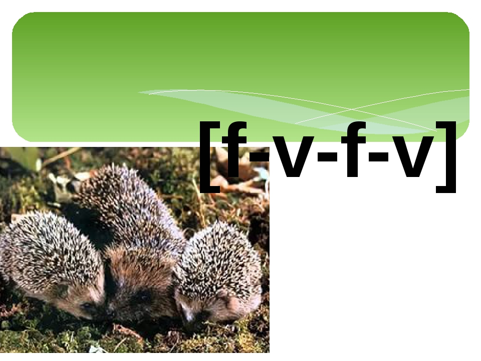 [f-v-f-v]