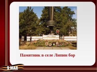 Памятник в селе Липин бор