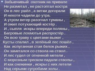 Забывчивый охотник на привале Не разметал , не растоптал костра Он в лес ушёл