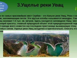 Одно из самых красивейших мест Сербии – это Каньон реки Увац. Река с сильным