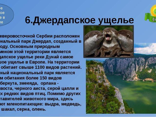 6.Джердапское ущелье В северовосточной Сербии расположен национальный парк Д...