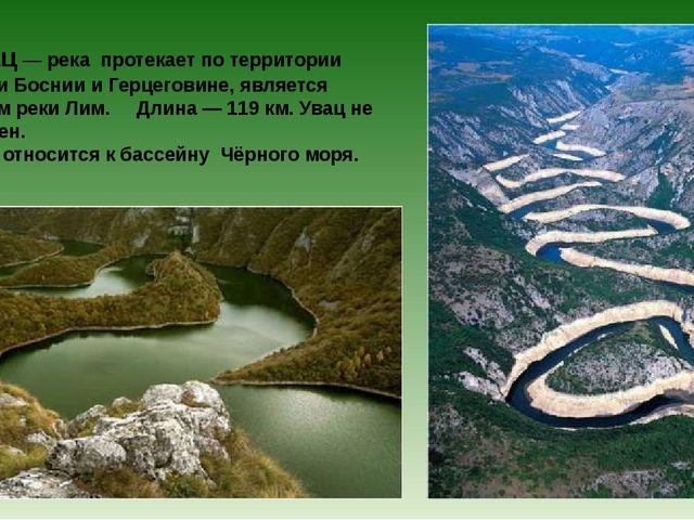 Увац— река протекает по территории Сербии и Боснии и Герцеговине, является...
