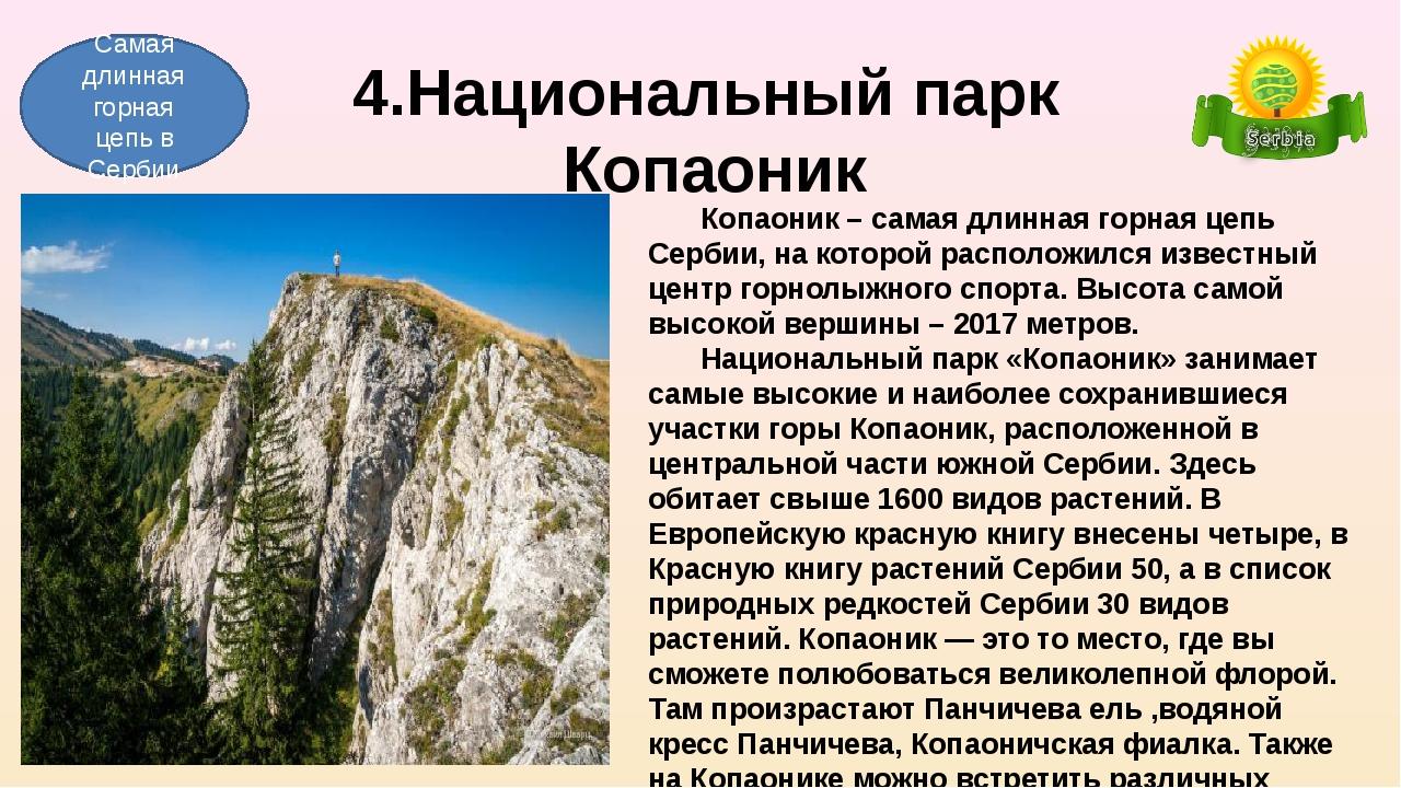 4.Национальный парк Копаоник Копаоник – самая длинная горная цепь Сербии, на...