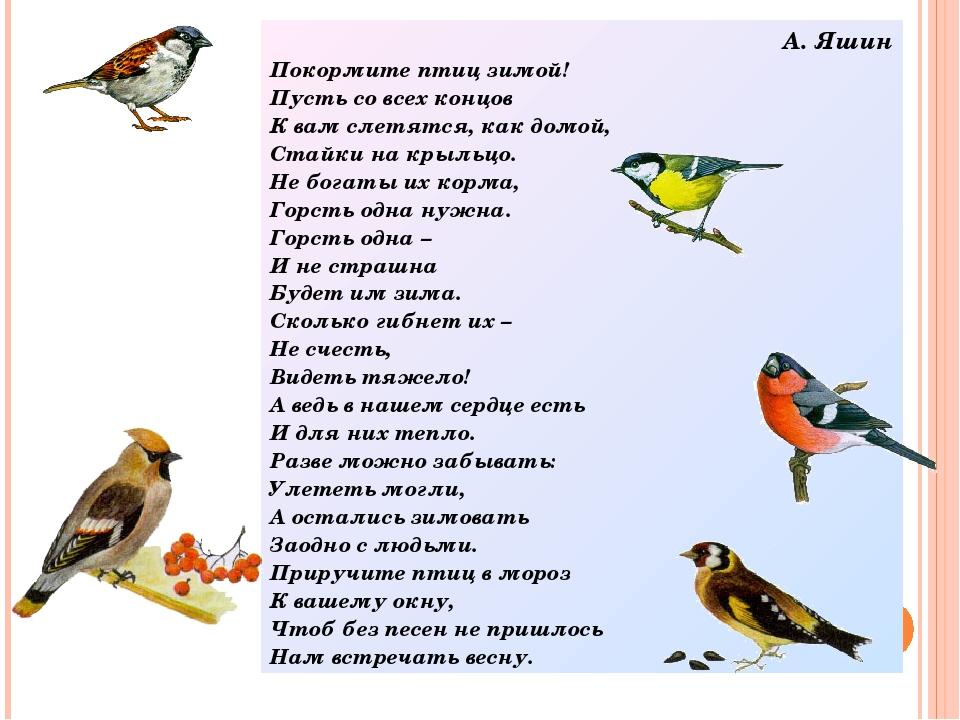 А. Яшин Покормите птиц зимой! Пусть со всех концов К вам слетятся, как домой,...