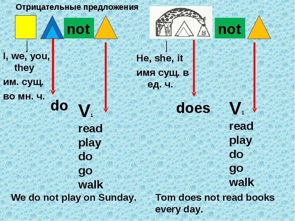 I, we, you, they им. сущ. во мн. ч. not do V1 read play do go walk We do not...