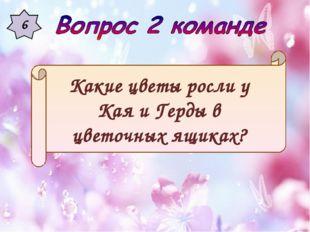 6 Какие цветы росли у Кая и Герды в цветочных ящиках?