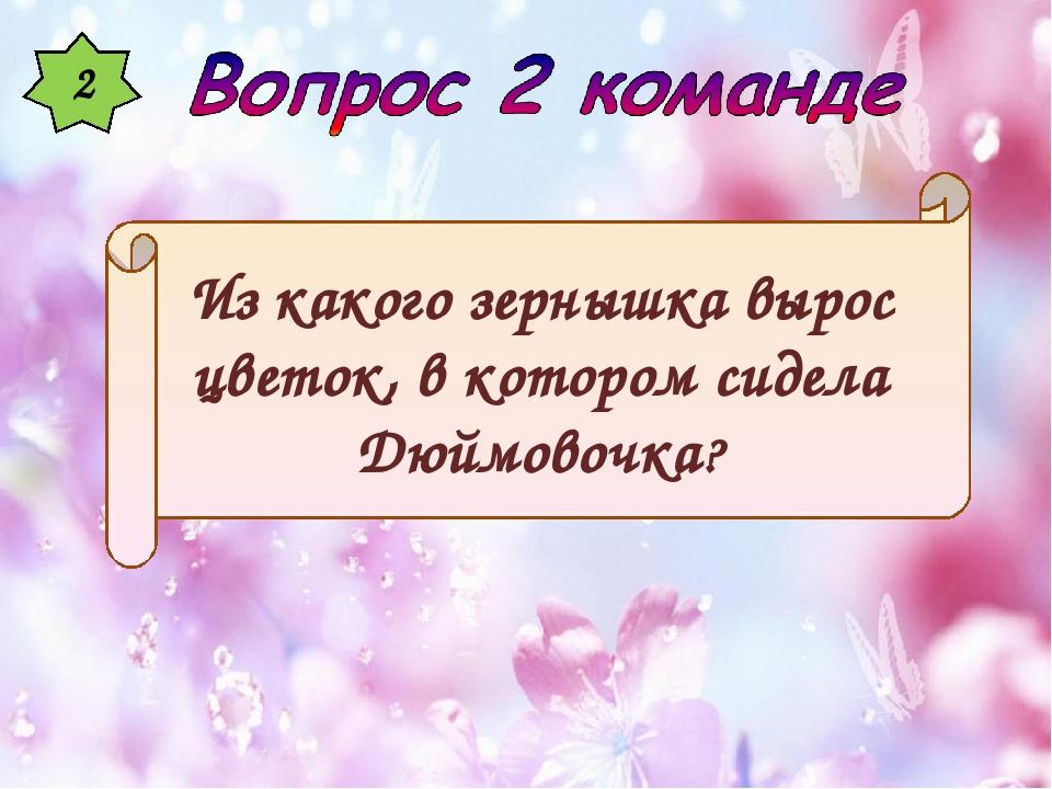 2 Из какого зернышка вырос цветок, в котором сидела Дюймовочка?