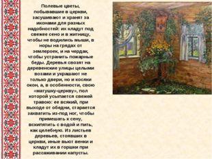 Полевые цветы, побывавшие в церкви, засушивают и хранят за иконами для разных