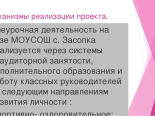 Механизмы реализации проекта. Внеурочная деятельность на базе МОУСОШ с. Засоп