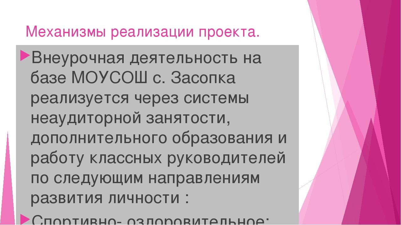 Механизмы реализации проекта. Внеурочная деятельность на базе МОУСОШ с. Засоп...