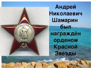 Андрей Николаевич Шамарин был награждён орденом Красной Звезды