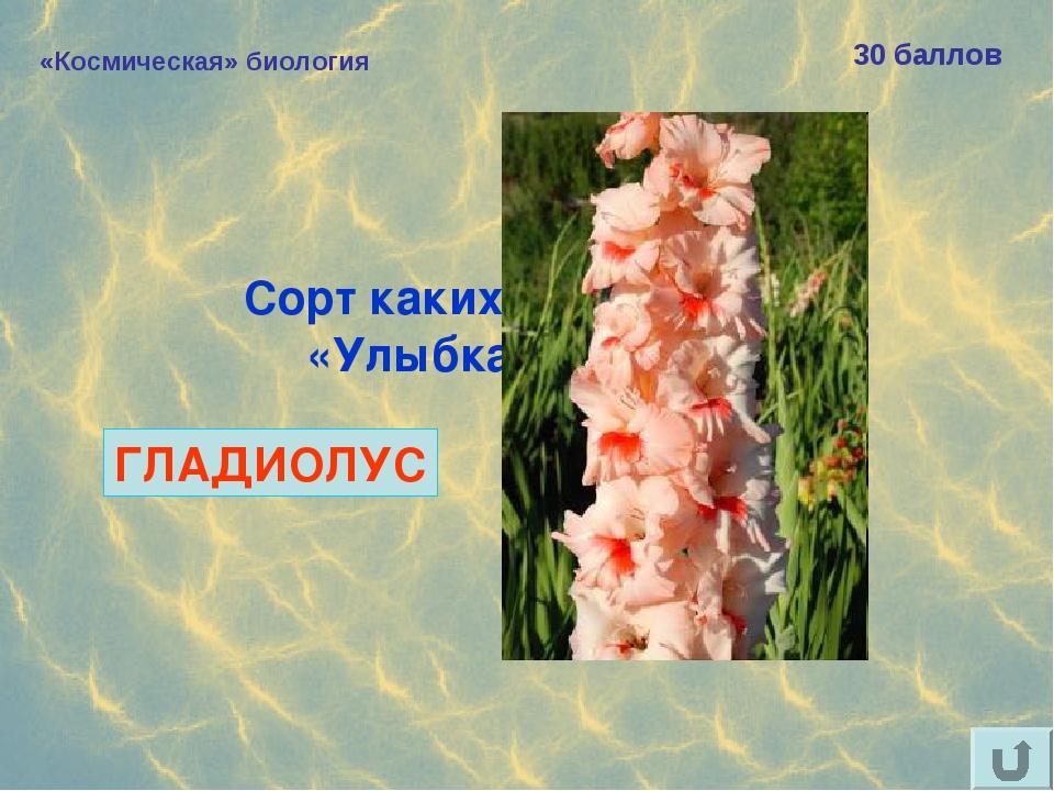 «Космическая» биология 30 баллов Сорт каких цветов назван «Улыбка Гагарина»?...