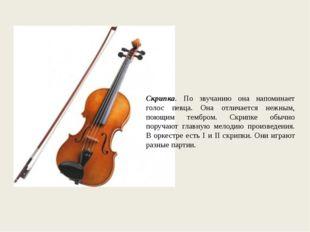 Скрипка. По звучанию она напоминает голос певца. Она отличается нежным, поющи