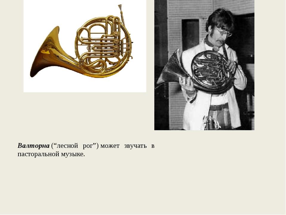 """Валторна(""""лесной рог"""")может звучать в пасторальной музыке."""