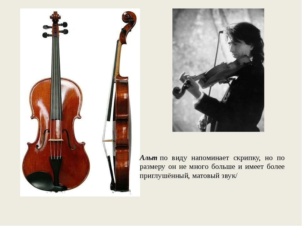 Альтпо виду напоминает скрипку, но по размеру он не много больше и имеет бол...