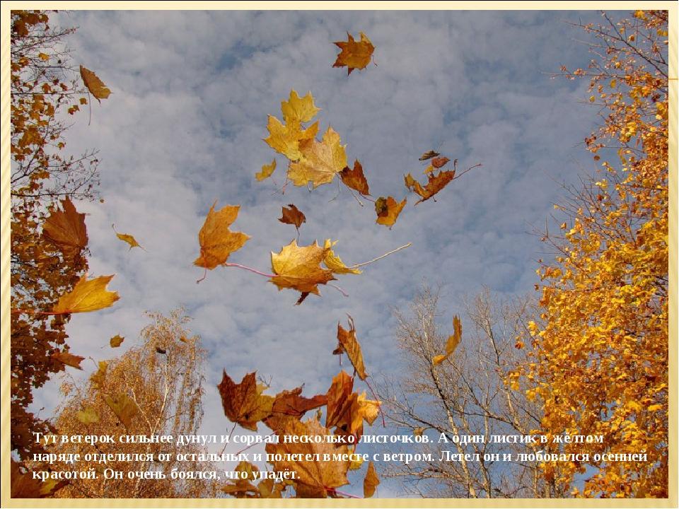 Тут ветерок сильнее дунул и сорвал несколько листочков. А один листик в жёлто...
