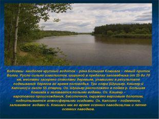 Водоемы- наиболее крупный водоток – река Большая Кокшага – левый приток Волги
