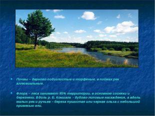 Почвы – дерново-подзолистые и торфяные, в поймах рек аллювиальные. Флора – ле