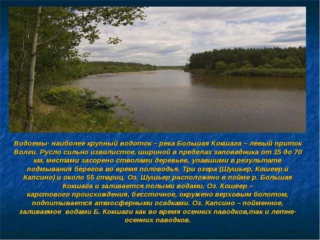 Водоемы- наиболее крупный водоток – река Большая Кокшага – левый приток Волги...