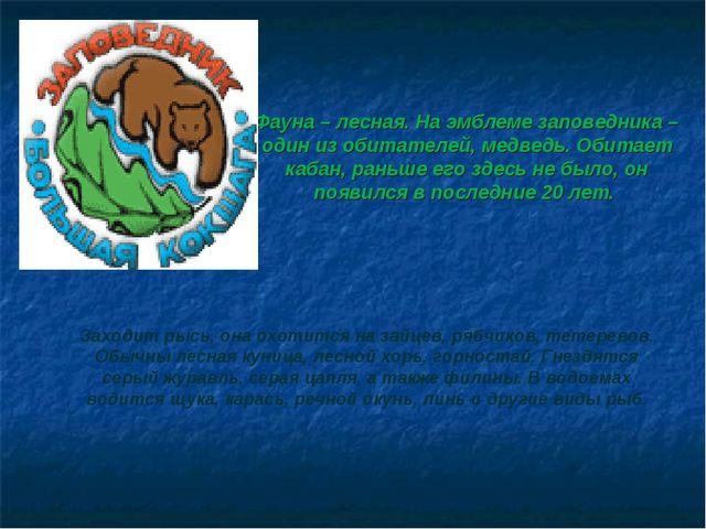 Фауна – лесная. На эмблеме заповедника – один из обитателей, медведь. Обитает...