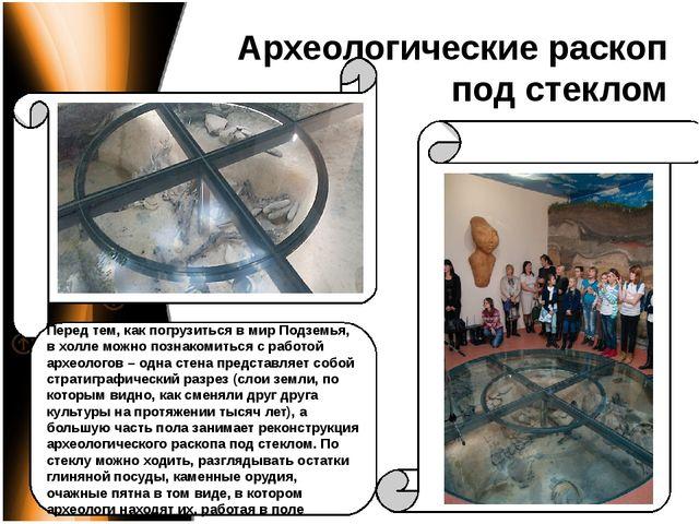 Археологические раскоп под стеклом Перед тем, как погрузиться в мир Подземья,...