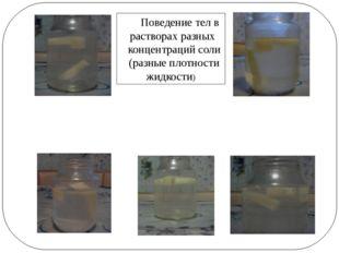 Поведение тел в растворах разных концентраций соли (разные плотности жидкости)